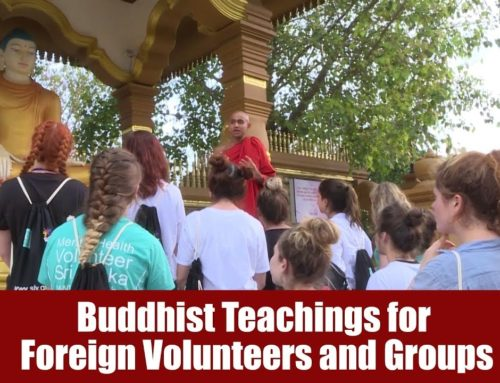 Buddhist Teachings for Foreign Volunteers and Groups